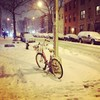 Brooklyn in the storm