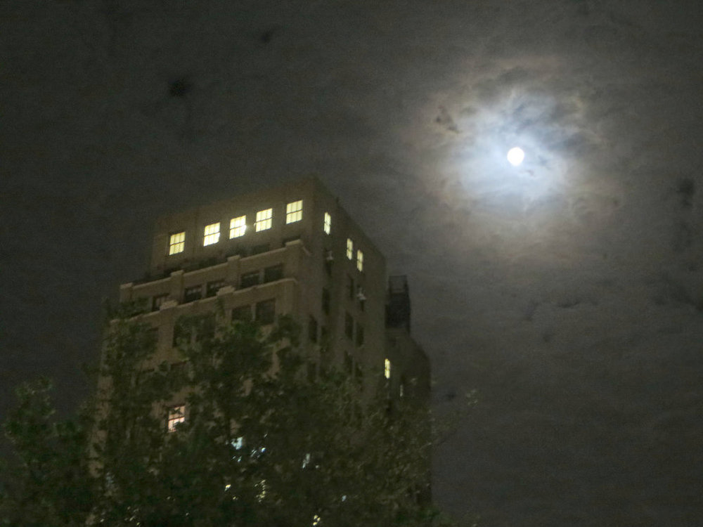 Full Moon Over Union Square